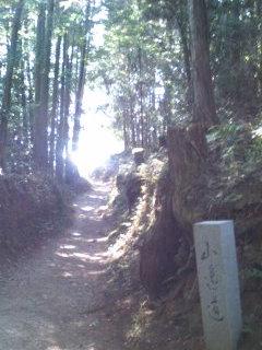 山辺の道.jpg